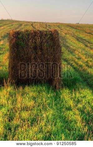 Haystack on the field in early morning.