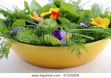 Cooking With Herbs Concept.