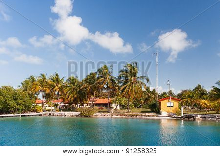 ?oast Of One Of The Islands Of Cuba - Sea, Palms And Bungalow.
