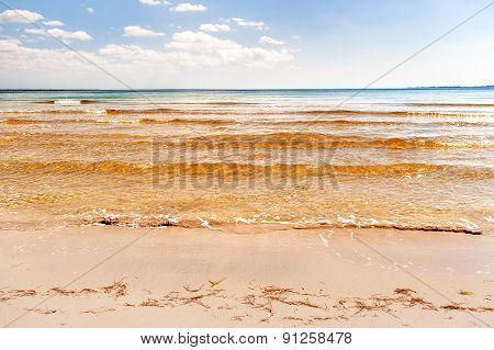 Soft Wave Of The Sea On The Sandy Beach. Blue Sky, Golden Sand And Seaweeds. Varadero, Cuba.