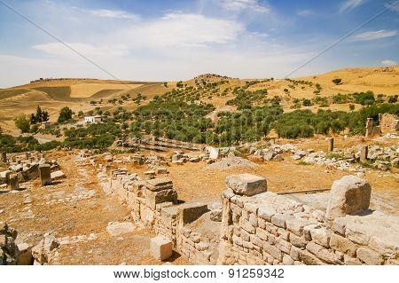 Olive Groves Around Ancient Ruins Of Roman City Of Dougga, Tunisia.