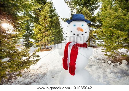 Close-up view of cute snowman with hat and scarf