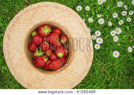 Strawberries In A Hat