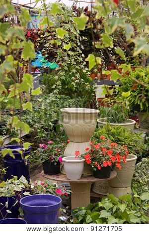 Different flower pots in a green house in spring time