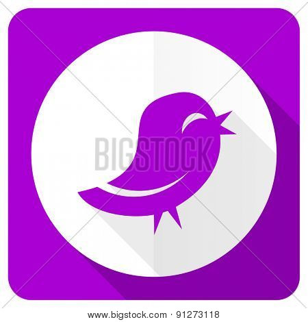twitter pink flat icon