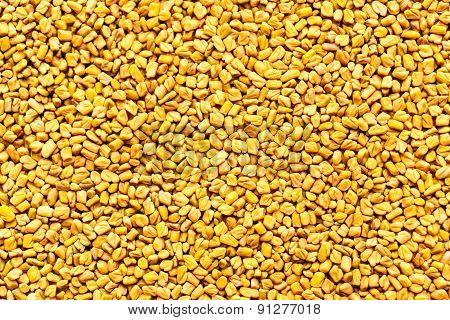 fenugreek seeds background