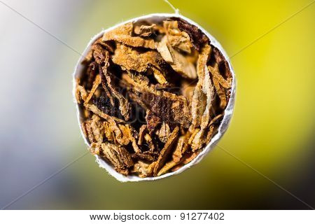 macro view of the front part of cigarette stuffed with tobacco