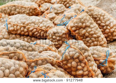 potatoes in the bags at farmers market