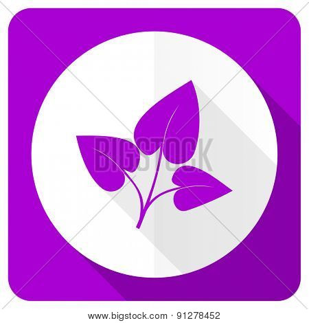 leaf pink flat icon nature sign