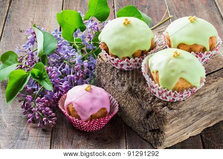 Colorful Glazed Cupcakes And The Branch Lilac