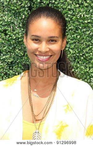 0LOS ANGELES - MAY 16:  Joy Bryant at the Super Saturday LA at the Barker Hanger on May 16, 2015 in Santa Monica, CA