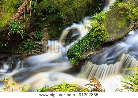 Small waterfall in jungle