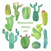foto of cactus  - Watercolor hand drawn cactus set on white backgraund - JPG