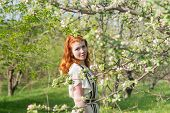 image of orchard  - lovely red - JPG