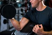 pic of biceps  - Cropped image on man performing dumbbell exercise for biceps - JPG