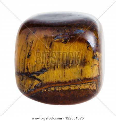 Tumbled Tiger-eye Mineral Gem Stone Isolated