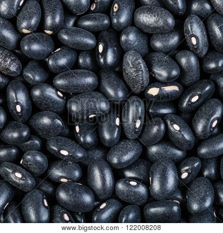 Many Raw Black Turtle Beans Close Up