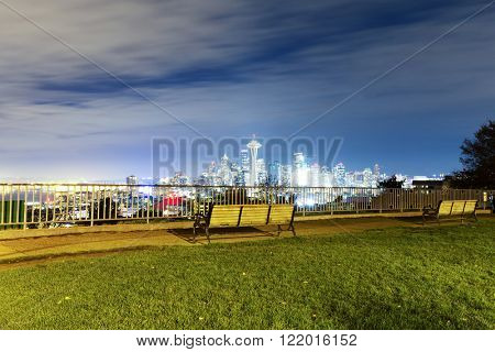 meadow with cityscape of seattle at night