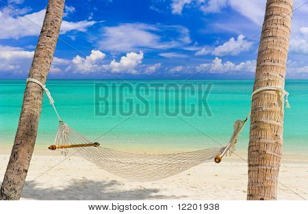 Hammock on a tropical beach