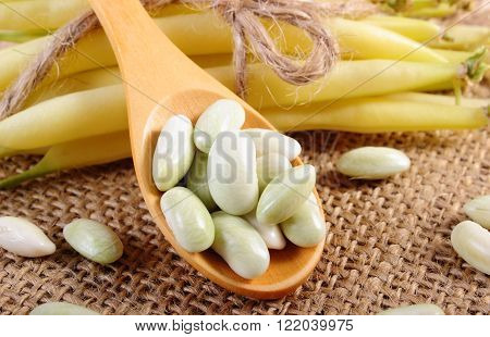 Seeds of beans on wooden spoon and stack of beans tied with string lying on jute canvas, healthy food and nutrition