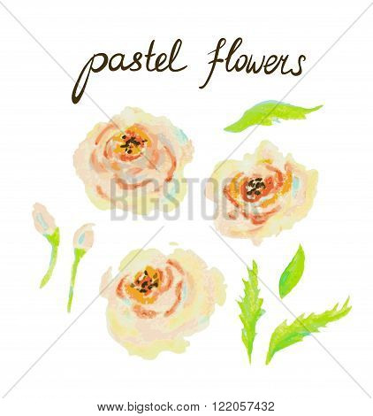 Pastel Vector Flowers. Hand drawn isolated objects.