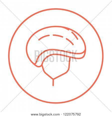 Bicycle helmet line icon.