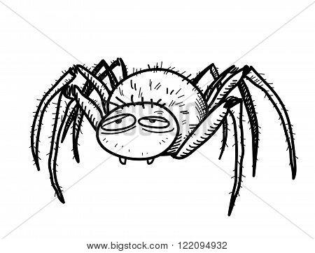 Spider Doodle, a hand drawn vector doodle illustration of a spider/tarantula.