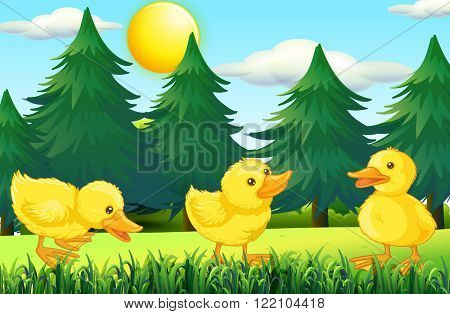 Three little ducklings in the park illustration