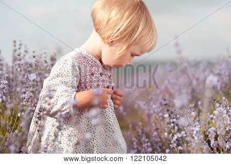 Kid girl 2-3 year old walking in lavender meadow. Wearing trendy dress in rustic style Looking down. Childhood.