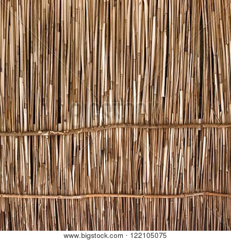 A wooden background with vertical reeds, close up