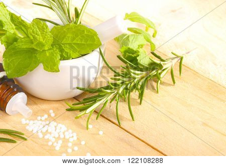 various medicinal herbs in mortar and globules