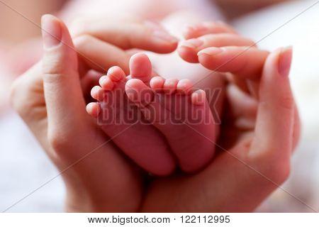 Newborn baby feet parent holding in hands