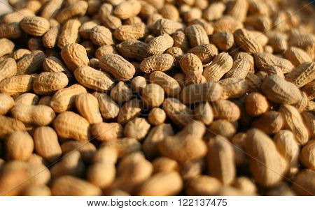 Peanuts - Pile Of Peanuts/ Stack Of Peanuts