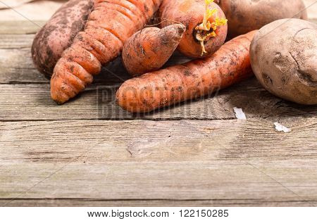 Vegetables the crude carrots and potatoes on old boards. Close up small depth of sharpness