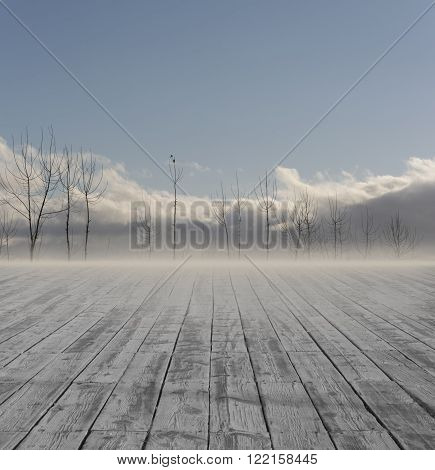 Destiny Boardwalk At Floor Go to the Distance Trees Wintry Landscape.