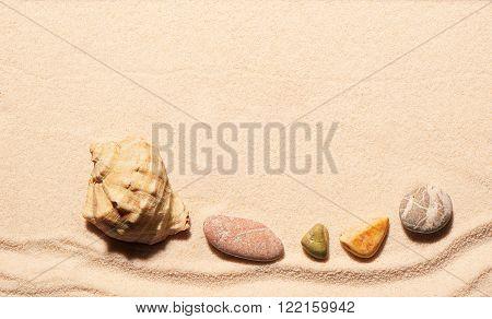 Seashell And Sea Stones On Sand. Summer Beach Background