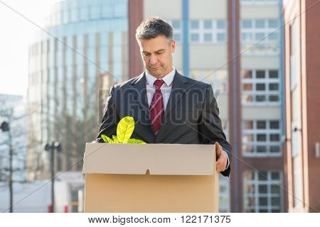 Businessman Standing With Cardboard Box Outside Office