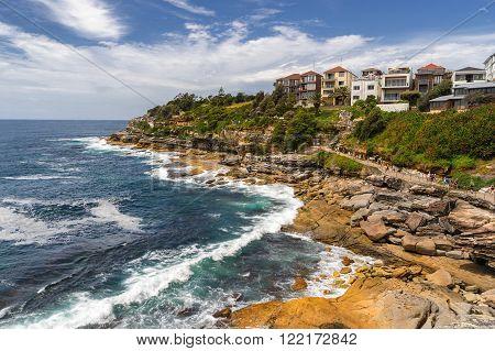 Long Reef Aquatic Reserve near Collaroy in Sydney