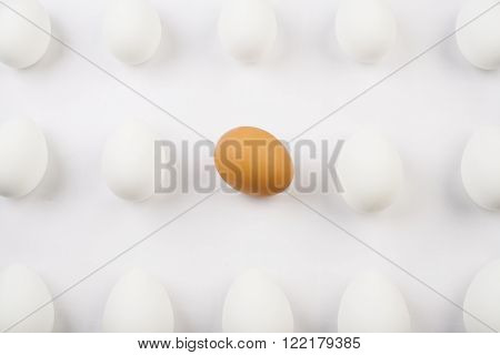 One organic brown egg among three rows of white eggs
