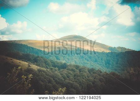 Mountain peak far away, surrounded by forest, the filter