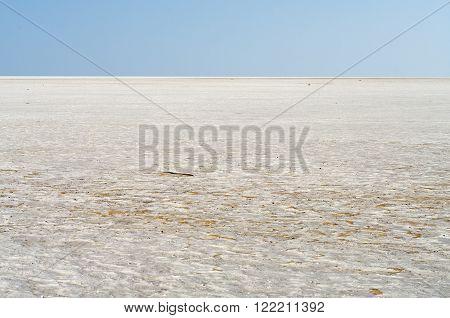 Landscape of the Salt Desert in Sustanate Oman