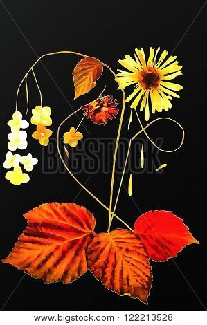 drawing of dried fall leaves and flowers on a lattice of thin straws and branches isolated on white watercolor paper background for scrapbook painted wooden planks object roughage autumn leaf.