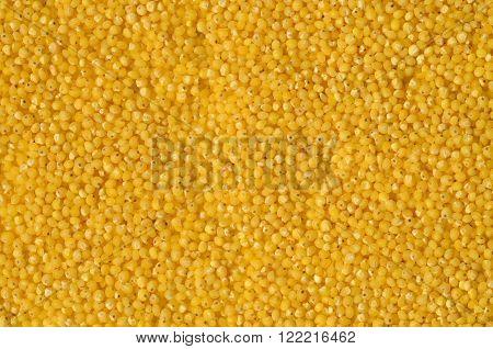Raw Yellow Millet