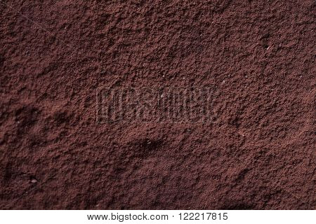 Top view of Tiramisu with cocoa powder