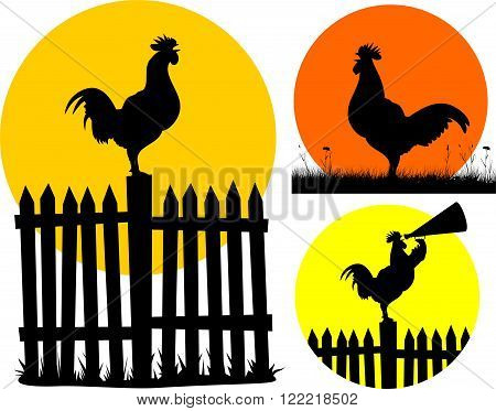vector silhouettes of roosters on the background of the rising sun