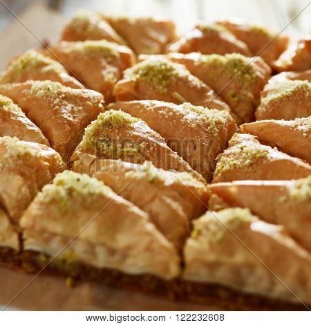 two dozen baklava close up