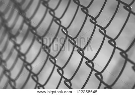 Closeup on wire mesh covered with rime on sunrise shallow depth of field black and white image