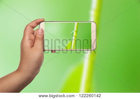 Image of shooting photograph with smartphone on macro bubble blurred green background