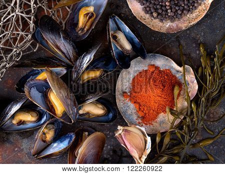 Steamed mussels on a rustic background with paprika pepper garlic and seaweed.
