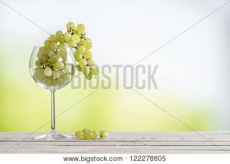 Grapes In A Vine Glass